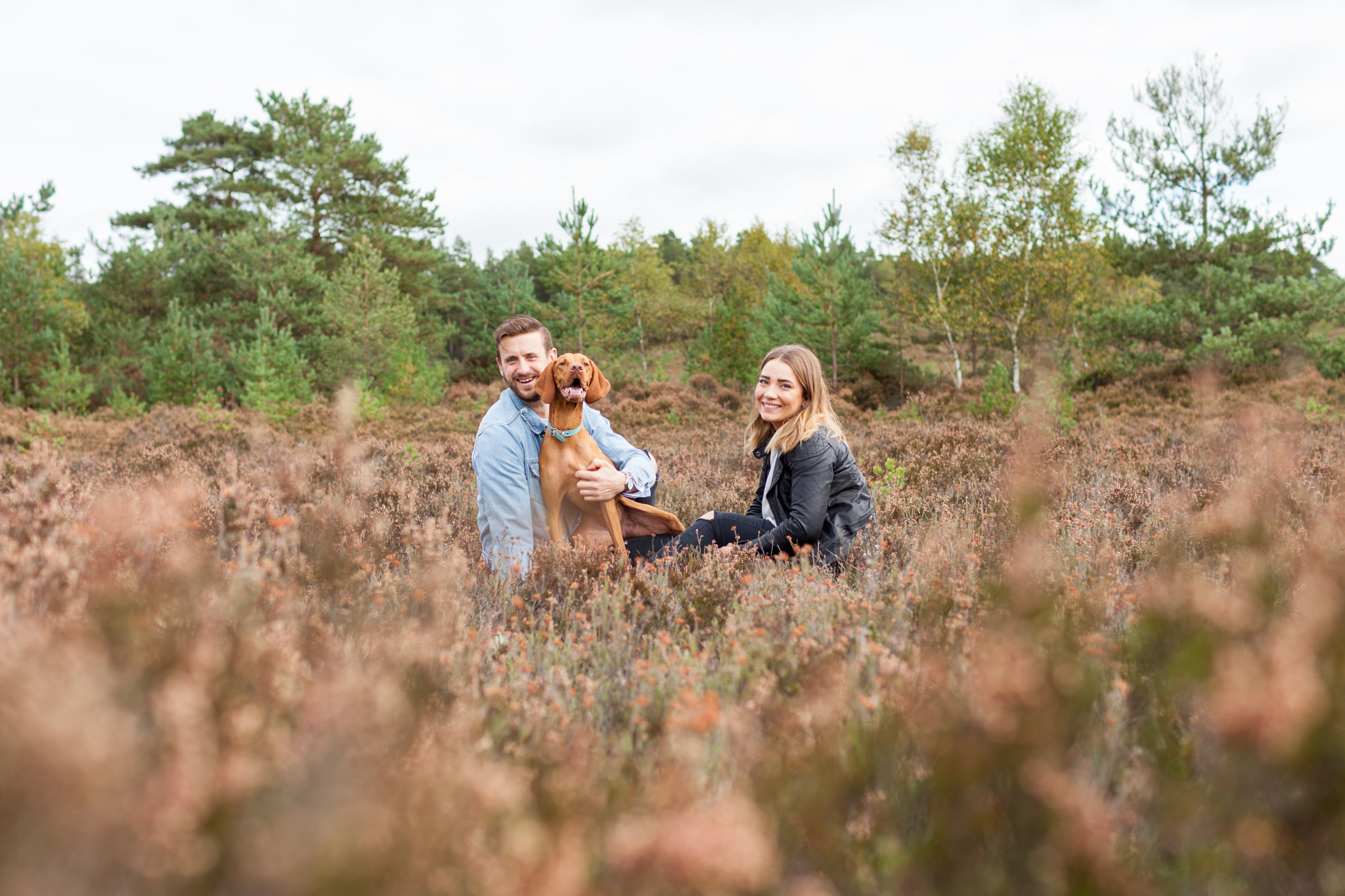 Blog – Farnham Engagement – Hankley Common, Imogen and James